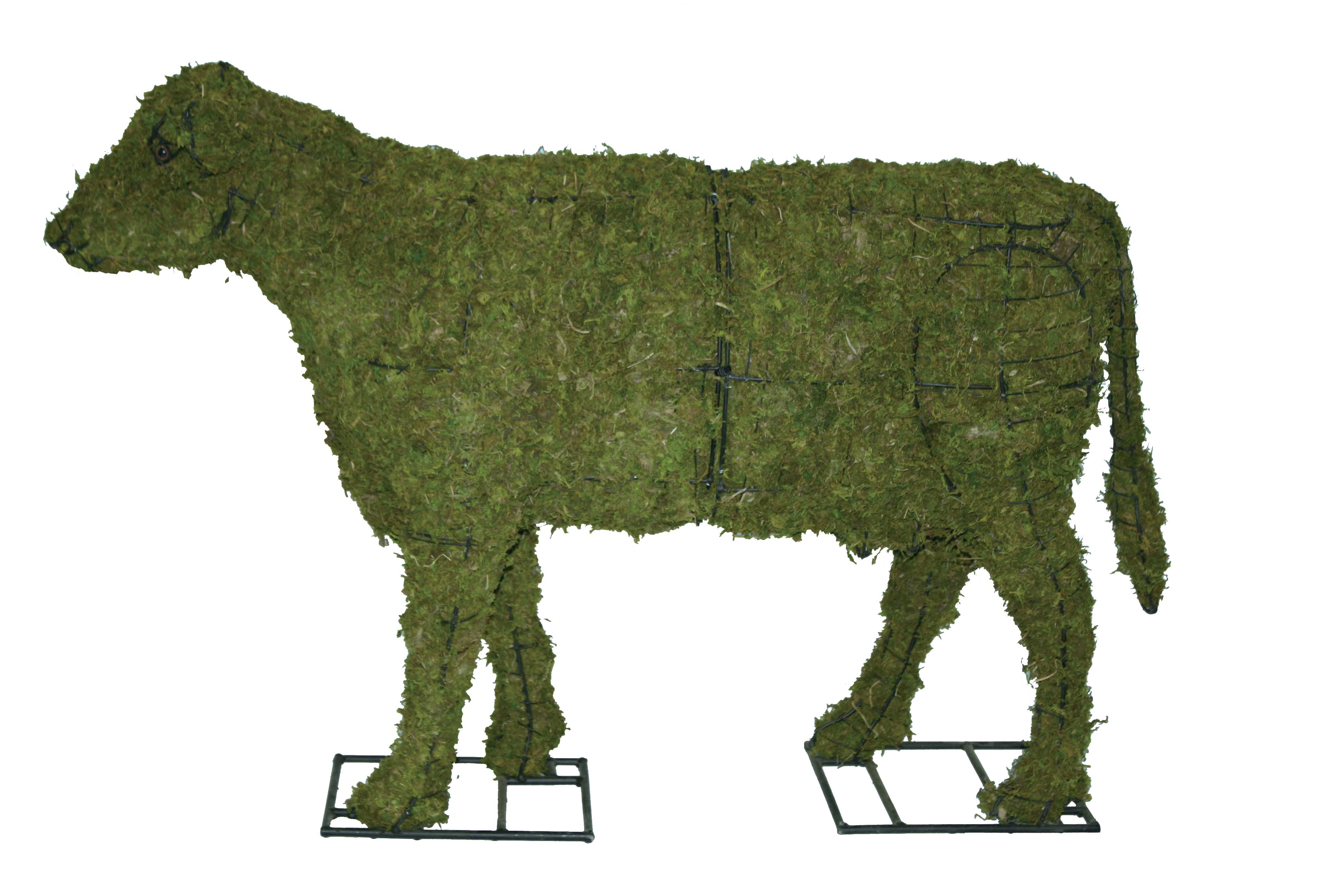 Topiary Form Sculptures