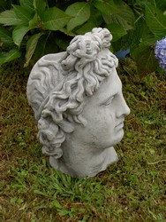 Reinforced Concrete Apollo Head Planter