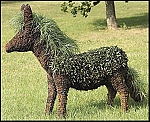 18 Inch Donkey Garden Topiary Frame Mossed
