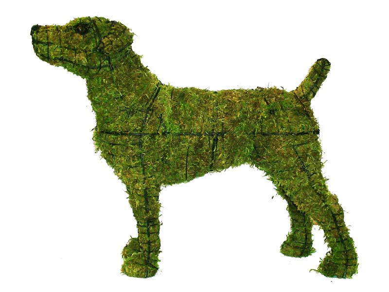 Jack Russell Dog Garden Topiary Frame