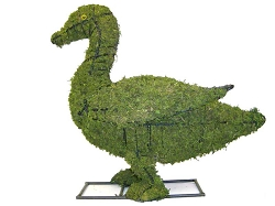 Duck Garden Topiary Mossed Frame