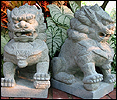 Chinese Foo Dogs & Lions