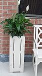 Jefferson Planter Stand