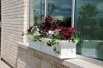 8 ft Yorkshire Durable Resin Window Box Planter