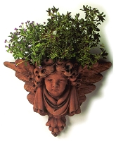 Winged Cherub Terracotta Wall Planter