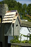 Heartwood Bluebird Manor Bird House