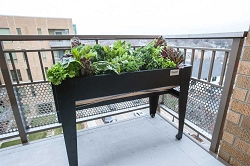 Venture Products Black Lgarden Balcony Elevated Gardening System