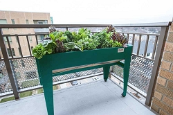 Venture Products Green Lgarden Balcony Elevated Gardening System