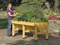 VegTrug Medium Wooden Frame Elevated Garden
