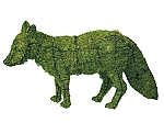 Fox Garden Topiary Mossed Frame