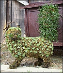 Cat Walking Garden Topiary Frame