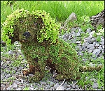 Cavalier Dog Sitting Garden Topiary Frame